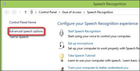 Advanced speech options