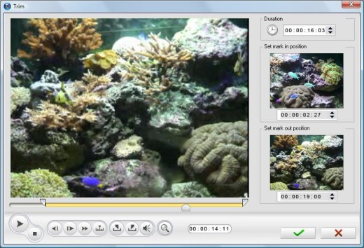 Image of a video clip in the Trim window