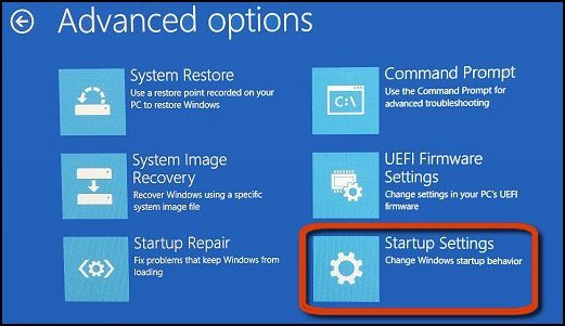 Startup Settings selected in the Advanced options window