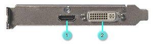Imagen del soporte de la tarjeta de video que muestra los puertos