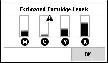 Image:  Example of the ink level display.