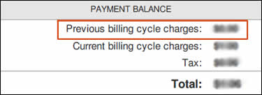 Example of charges from a previous billing cycle