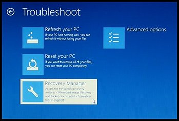 Troubleshoot screen with Recovery Manager selected