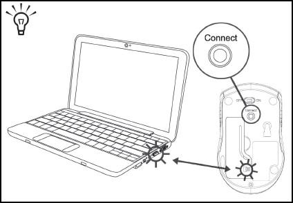 Ubicación del botón de conexión y las luces