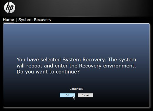 Confirming choice to enter Recovery environment