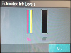 Example of estimated ink levels.