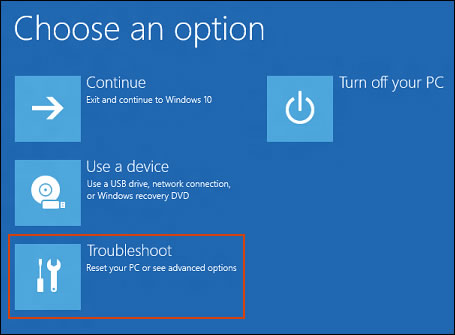 Clicking Troubleshoot on the Choose an option screen