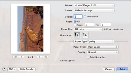 Example Of Print Settings With Show Details Selected