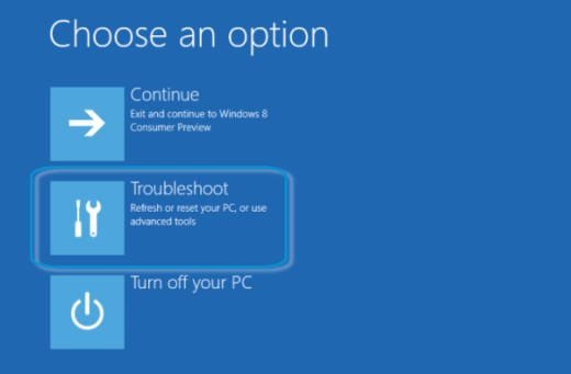 Choose an option screen with Troubleshoot selected