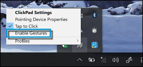 Enable Gestures unchecked