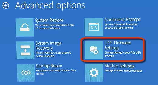 Advanced Options with UEFI Firmware Settings selected