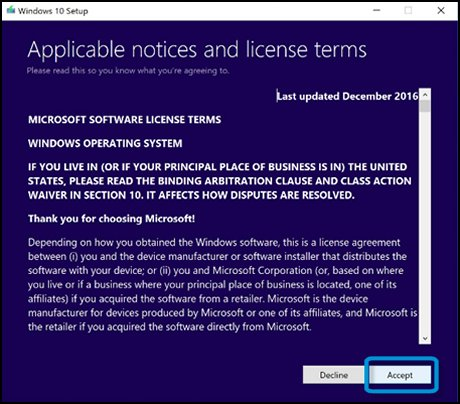 Accepting the license terms screen with Accept selected