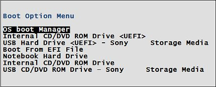 Windows 8 UEFI BIOS boot menu with OS boot manager selected