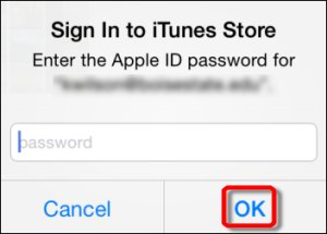 Signing in to App store