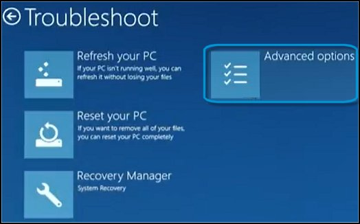 Troubleshoot screen, with Advanced options selected