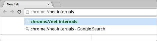 Chrome net internals URL in the omnibox