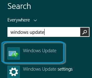 Selecting Windows Update from the search results