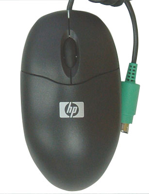 Top view of mouse