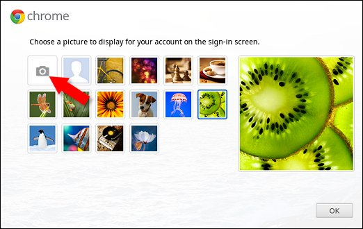 Webcam icon on the Chrome display picture screen