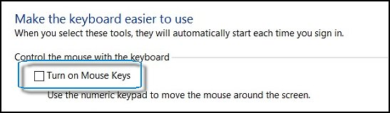 Turn on Mouse Keys unchecked
