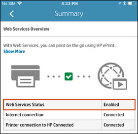 Web Services section when Web Services is enabled