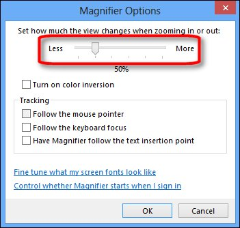 The Magnifier Options menu with the zoom options slider selected