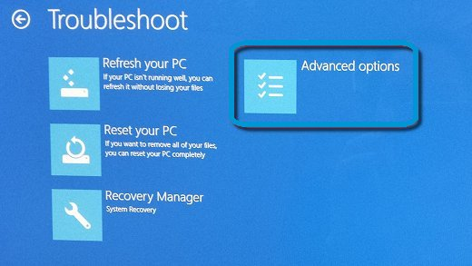 Troubleshoot screen with Advanced options selected