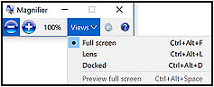 Magnifier toolbar with the Views options displayed