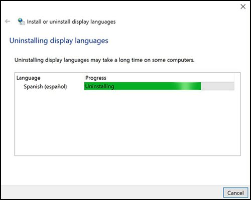 Ventana de Desinstalación de idiomas de visualización