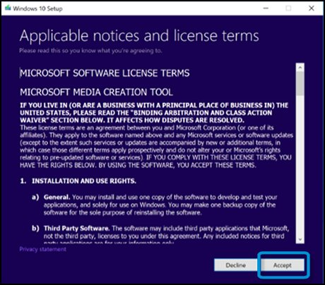 License terms screen with Accept selected