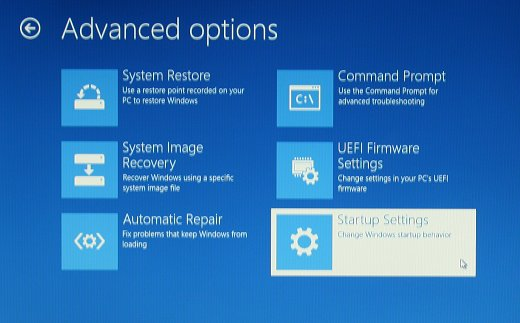 Advanced options screen with Startup Settings selected