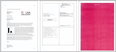 Checks printer condition and image evaluation